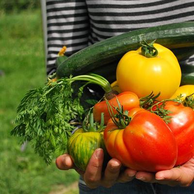 la permaculture