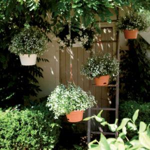 Elho - pots de fleurs recyclés